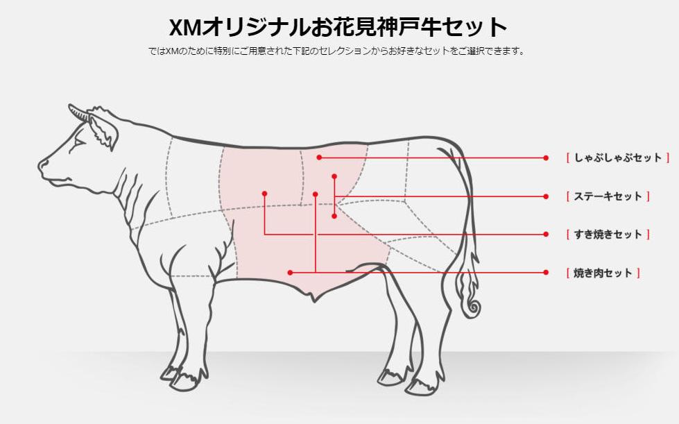 XM100万円肉ボーナス